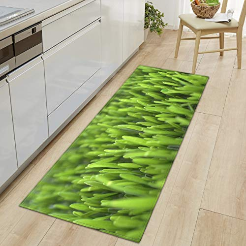 HLXX Alfombra de cocina para puerta de porche, lavable, antideslizante, A13, 50 x 160 cm