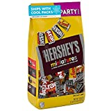 HERSHEY'S Assorted Chocolate Miniatures (HERSHEY'S, KRACKEL, & MR. GOODBAR) Candy, Variety Pack, 35.9 Oz