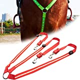 COTTILE Arnés de caballo LED Reflex, recargable por USB, mejor visibilidad al montar a caballo, ajustable, resistente y cómodo
