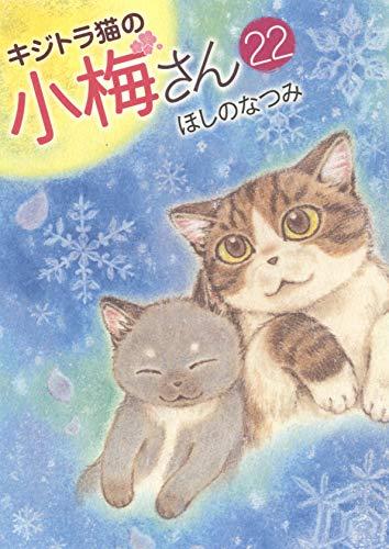 キジトラ猫の小梅さん 22 (22巻) _0