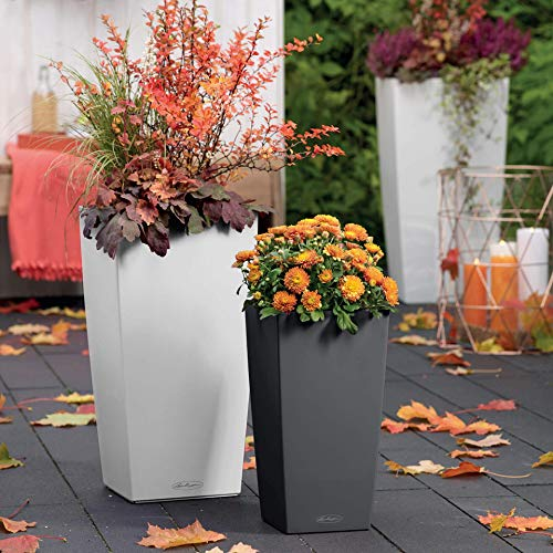 Self Watering Garden Planter for Indoor and Outdoor Use