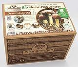 Pilzmännchens Bio Home-Pilzzuchtset von der Braunkappe