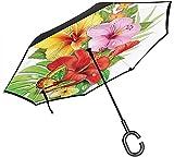 Ramo de coloridas flores de hibisco con una mariposa floreciente pétalos de Plumeria paraguas con mango en forma de C, paraguas inverso del coche