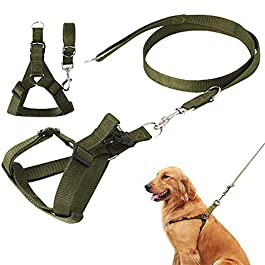 PLUS PO Cat Harness And Leash Dog Leash Dog Collars And Leads For Medium Dogs Dog Harness Small Adjustable Dog Leash For Small Dogs No Pull Harness For Dogs