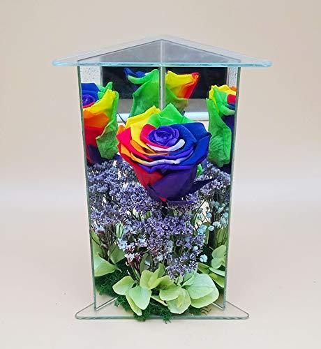Rosa eterna preservada eterna Multicolor. Gratis tu envío. Rosa preservada Multicolor arcoíris en Estructura. Hecho en España.