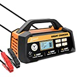Ampeak 2/8/15A 12V Smart Battery Charger/Maintainer Fully Automatic with Winter Mode