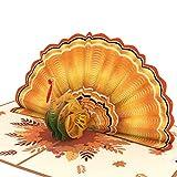 Lovepop Give Thanks Turkey Pop Up Card, 5x7 - 3D Greeting Card, Thanksgiving Greeting Card, Thanksgiving Pop Up Card, Autumn Pop Up Cards