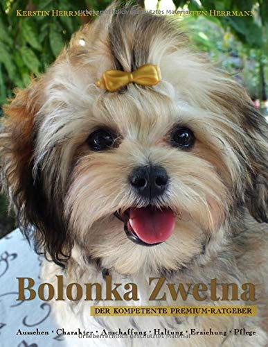 Bolonka Zwetna: Der kompetente Premium-Ratgeber