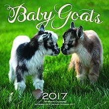 Best baby goat calendar 2016 Reviews