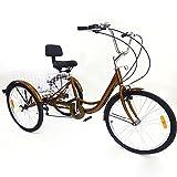 BTdahong Triciclo Adultos de 6 Velocidades, Bicicleta con 3 Ruedas, Triciclo de Bicicleta de 24', Bicicleta de Aluminio con Respaldo Cesta