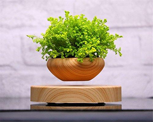 ZOMTOP Lévitation magnétique Air Suspension Bonsai Pot de Fl