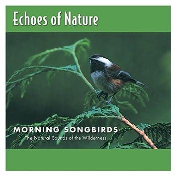 Morning Songbirds