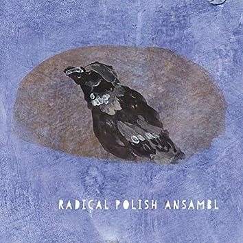 Radical Polish Ansambl