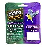 Extra Select Wild Bird <span class='highlight'>Hi</span>gh <span class='highlight'>Energy</span> Suet Block Mealworm, 6 x 320 g
