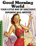 Baldfrog Images Good Morning World Your Little ray of Sarcastic Sunshine has Arrived 2' x 3' Fridge Magnet Refrigerator Vintage Image Gift Retro Funny Humor