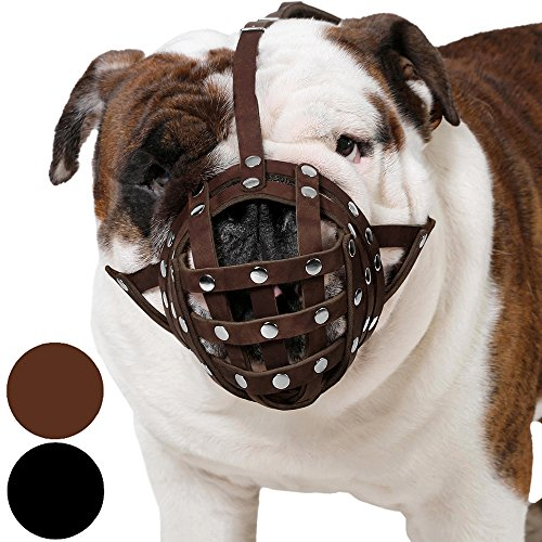 CollarDirect Basket Dog Muzzle for Boxer, English Bulldog, American Bulldog Secure Leather Muzzle (Brown)
