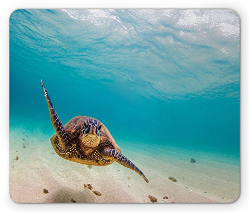 Lunarable Hawaiian Mouse Pad, Underwater Scuba Diving Sea Turtle Nature Animal Swimming Wildlife Theme, Rectangle Non-Slip Rubber Mousepad, Standard Size, Beige Brown
