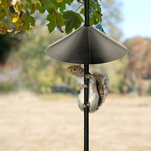 Woodlink NABAF18 Audubon Wrap Around Squirrel Baffle, 18-Inch - Black
