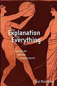 The Explanation For Everything: Essays on Sexual Subjectivity (Sexual Cultures Book 31)