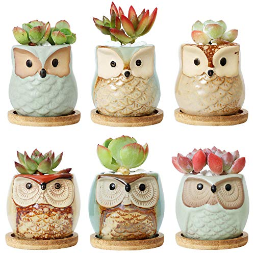 T4U 2.5 Inch Owl Ceramic Succulent Planter Pots with Bamboo Tray Set of 6, Flowing Glaze Porcelain Handicraft Plant Holder Container Gift for Mom Sister Aunt Best for Home Office Garden Decoration