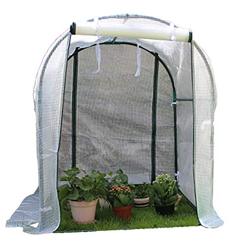 Small Plant Greenhouses, Portable Garden Green Hot House for Outdoor & Indoor, Waterproof UV Protected Reinforced PE Cover, 100x100x120cm