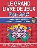 Le Grand Livre De Jeux Pour Ados: Cahier d'Activités Pour Les 12-16 ans - Sudoku - Mots-Mêlés - Labyrinthes – Coloriages – Bande dessinée vierge.