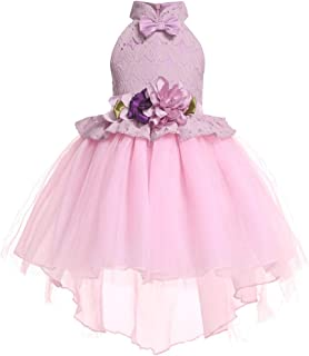 Flower Girl Lace Mesh Dress High Quality (Color : Pink, Size : 110)
