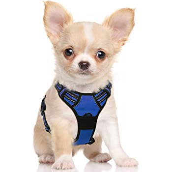 """rabbitgoo Dog Harness,No-Pull Pet Harness with 2 Leash Clips,Adjustable Soft Padded Dog Vest,Reflective No-Choke Pet Oxford Vest with Easy Control Handle for Small Breeds,Navy (S, Chest 15.7-27.6"""")"""