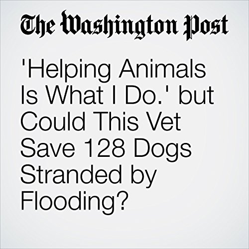 'Helping Animals Is What I Do.' but Could This Vet Save 128 Dogs Stranded by Flooding? copertina