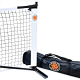 Amazin' Aces Portable Pickleball Net | Premium Net Set Includes Easy-Snap Metal Frame, Tension Strap Net, & Carry Bag for Easy Carry | Regulation Size Pickle Ball Net
