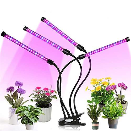 Fabriek Licht-licht-licht voor groeifasen, mehanglijke straling voor planten, snel groeiend, 70 x 8 mm