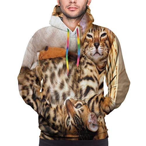 Men's Hoodies Sweatershirt,Little Bengal Cats in Basket Cuddly Purebred Kitties Domestic Feline,XXL