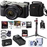 Sony Alpha 7C Mirrorless Digital Camera with FE 28-60mm f/4-5.6 Lens, Silver Bundle with Bag, 64GB SD Card, Extra Battery, Charger, Mini Tripod, Corel PC Software Suite, Filter Kit and Accessories