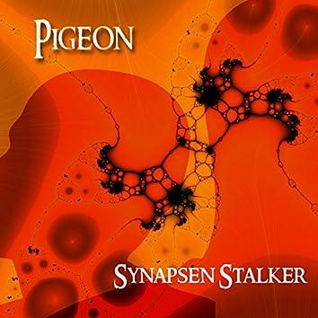Synapsen Stalker