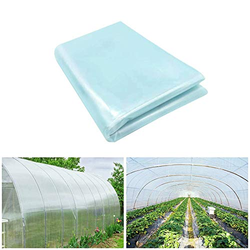 Brave Tour Greenhouse Clear Plastic Film-6.56x26.2Ft Polyethylene Greenhouse Film Greenhouse Plastic Sheeting Plant Greenhouse Cover Freeze Frost Protection UV Resistan for Garden and Agriculture