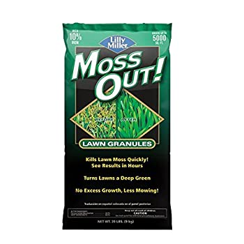 Best moss out Reviews