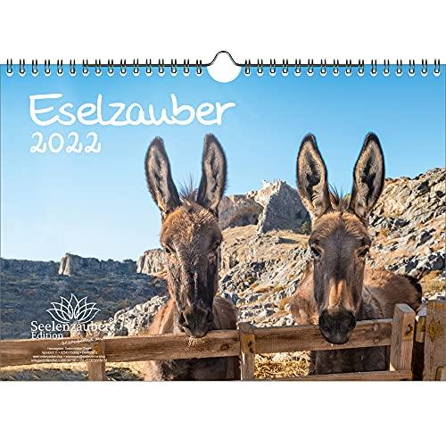 Eselmagie DIN A4 kalender voor 2022 ezel – cadeauset inhoud: 1x kalender, 1x kerst- en 1x wenskaart (in totaal 3 delen)