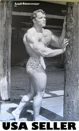 Arnold Schwarzenegger pumped up POSTER 21 x 31 grainy black & white as he looked in 70s (poster sent from USA in PVC pipe)