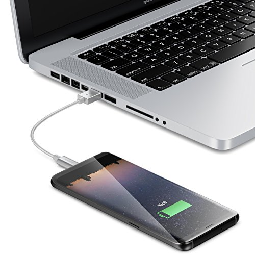 deleyCON 15cm USB-C Kabel - Ladekabel Datenkabel mit Nylon + Metallstecker - USB C auf USB A - Kompatibel mit S20 S10 S9 S8 Serie Note 8 Note 9 Chromebook uvw. Modelle mit C-Buchse - Silber