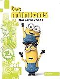 Les Minions / Qui est le chef ?
