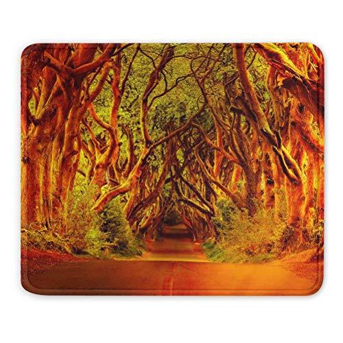 Irlanda The Dark Hedges Alfombrilla de ratón Regalo de Recuerdo 7,9 x 9,5 pulg. Almohadilla de Goma de 3 mm