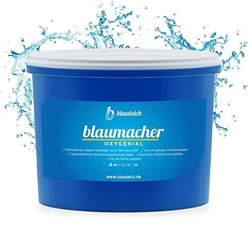 BLAUTEICH blaumacher OXYGENIAL Fadenalgenvernichter - sofortige Wirkung durch die Kraft von Aktivsauerstoff - ideal für Gartenteiche, Schwimmteiche und Koiteiche (1 kg)