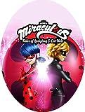 Uovo di Pasqua ARTIGIANALE cioccolato al latte Lady Bug Miraculous con SORPRESA, puoi anche personalizzare l'uovo a tuo piacimento! (6 kg)