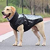 Zoom IMG-1 idepet cappotto per cani giacca