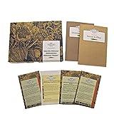 Surtido de lechugas: Misticanza/Mesclun-Set de regalo de semillas con 4 variedades de plantas tradicionales de la famosa mezcla para ensalada italiana