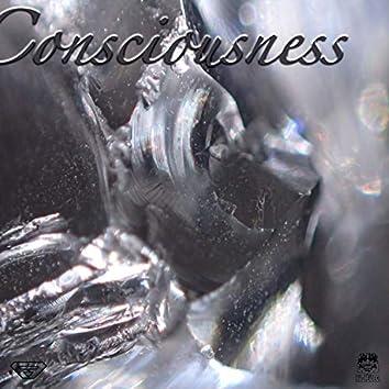 Consciousness (I Am Not)