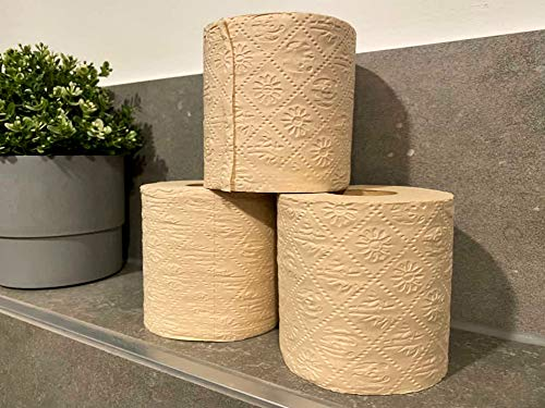 biomondi 100% Bambus - Toilettenpapier im Karton verpackt (96 Rollen á 200 Blatt)