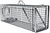 Holtaz Hardy 120x34x42 cm 1 Porta Gabbia Trappola in Metallo per Catturare Animali Vivi. con Extra Un'Esca.