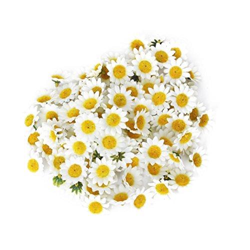 ROSENICE Künstliche Gerbera Blumen Köpfe für DIY Hochzeit - 100 Stücke