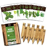 Herb Garden Seeds for Planting - 10 Culinary Herb Seed Packets Kit, Non GMO Heirloom Seeds, Plant Markers, Wood Gift Box - Home Gardening Gifts for Gardeners